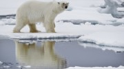 Cleaner air in Europe makes the Arctic warmer