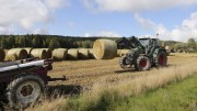 Sharply increased subsidies for the largest farms