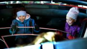 Over 20 serious accidents at amusement parks