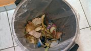 food waste trash