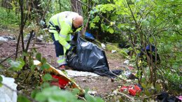 Garbage and feces in the forest