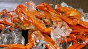 Snow crabs Norway EU License Svalbard