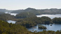 nature reserve protected forest areas