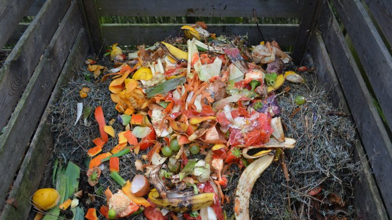 Compost, food waste