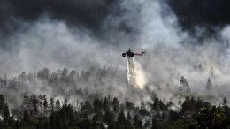 Helicopter forest fires