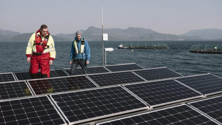 Salmon Farm Solar panel renewable energy