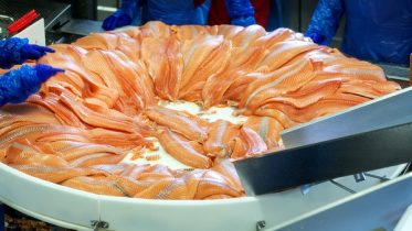 seafood exports.Norway