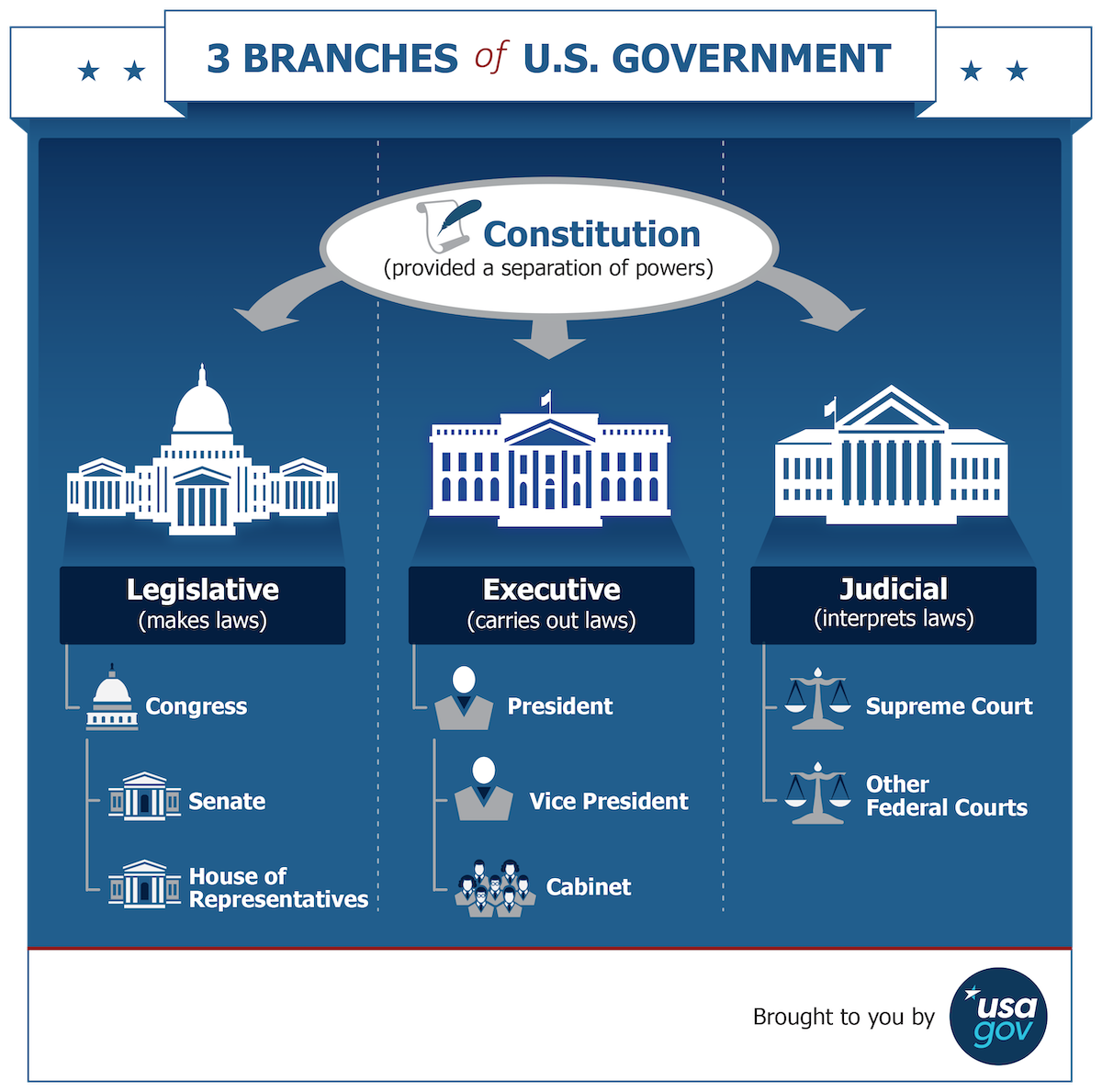 USA Government Branches Infographic