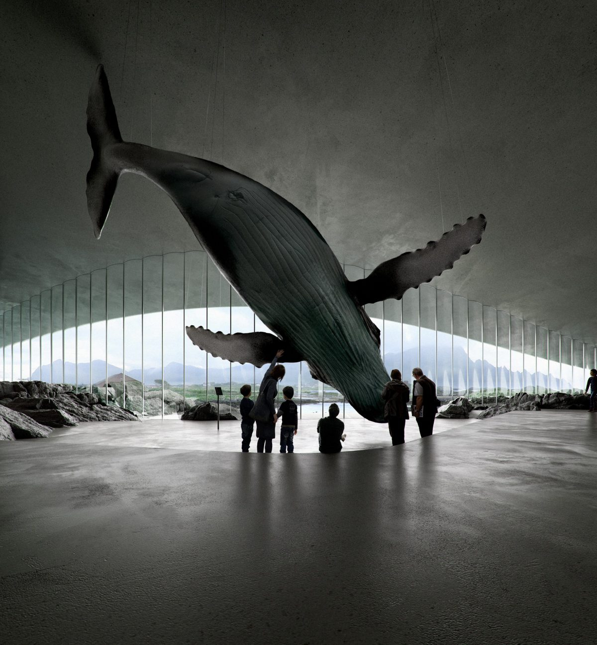 Whale watching museum