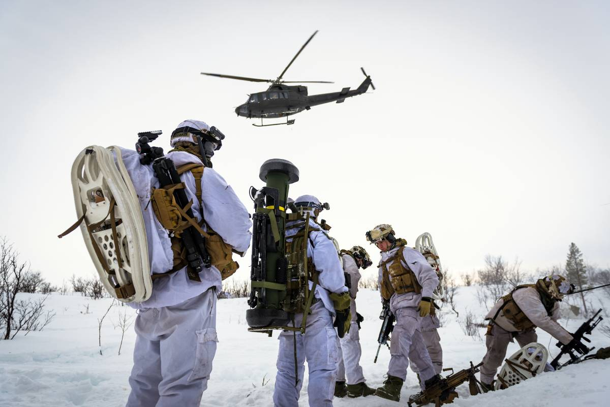 Soldiers Joint Viking